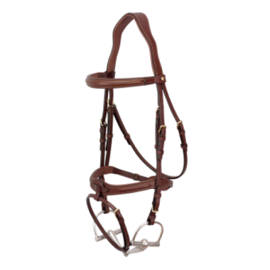 Bruno Delgrange Snaffle bridle flash noseband