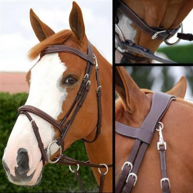 "Dyon bridles ""Fancy"""
