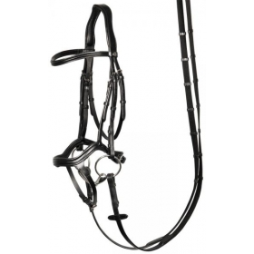 Bridle Anatomic