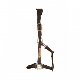 Kentucky leather anatomic halter