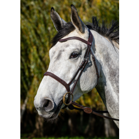 Dyon La Cense Collection bridles
