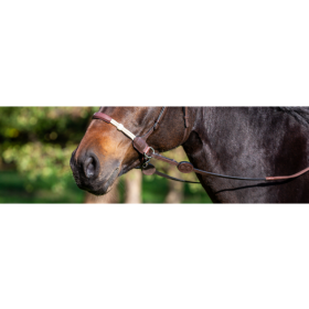Dyon La Cense Collection rubber reins