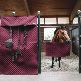 Kentucky stable curtain 142 x 220 CM