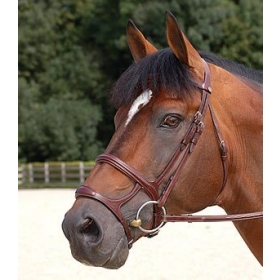 Dyon English Collection double noseband