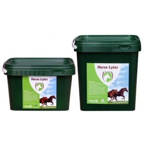 Holland Animal Care Horse-Lytes 2,5kg