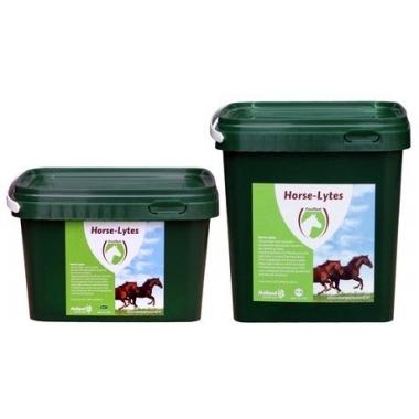 Holland Animal Care Horse-Lytes + B2 1kg