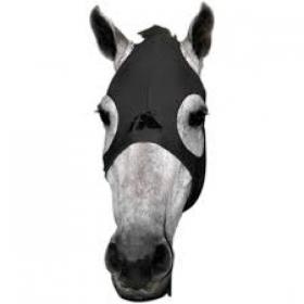 Fenwick Liquid Titanium Mask